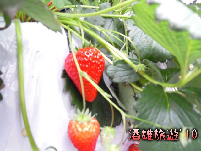 ADSCN3364_02_28_10_1408.jpg
